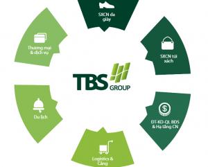 CDT TBS
